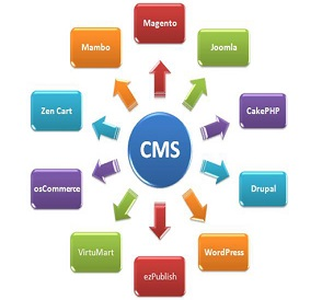 CMS Web Development Company India